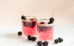 Blackberry Red Wine Spritzer