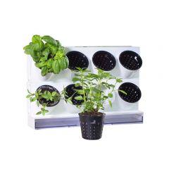 Countertop planter for herbs