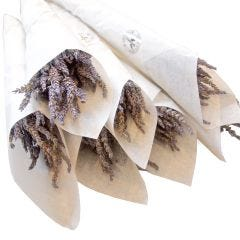 Dried Lavender Bouquet- Case of 6