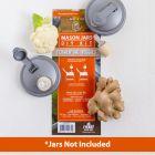 Sample - reCAP® Mason Jars DIY Kit: Fermenting Veggies