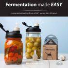 Fermentation made easy, fermentation recipes from reCAP Mason jars and friends ebook download cover
