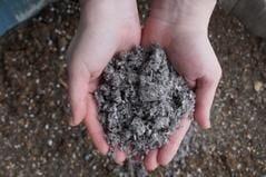 Heavy Metal in Potting Soils