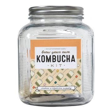 Kombucha Kit, Brew Your Own with 1 Gallon Jar - Case of 4