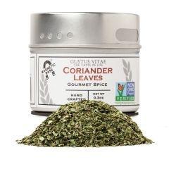 Coriander Leaves (Cilantro) - Case of 8