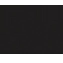 Aini Organix LLC