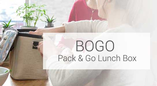 wholesale pack and go lunchbox